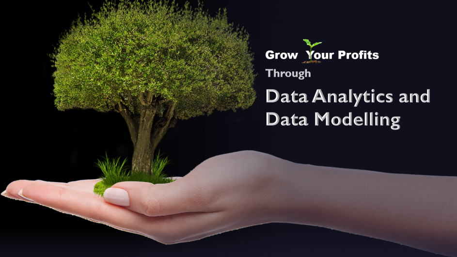 data analytics for your business